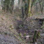 Rester af batteriet i Allerup Krat, graven, Sikringsstilling Nord