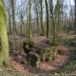 Hyrup skov, batterigraven