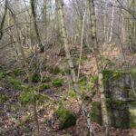 Hyrup skov, rester af batteriet