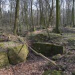 Hyrup skov, batterigrav
