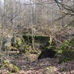 Hyrup skov, rest af bunker i skoven