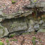 Hyrup skov, sprængt bunker i skoven