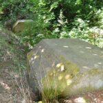 Bunkere i Kalby plantage, et vaf tømmerrummene